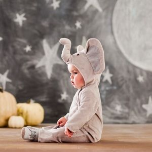 Pottery Barn Kids   baby elephant costume